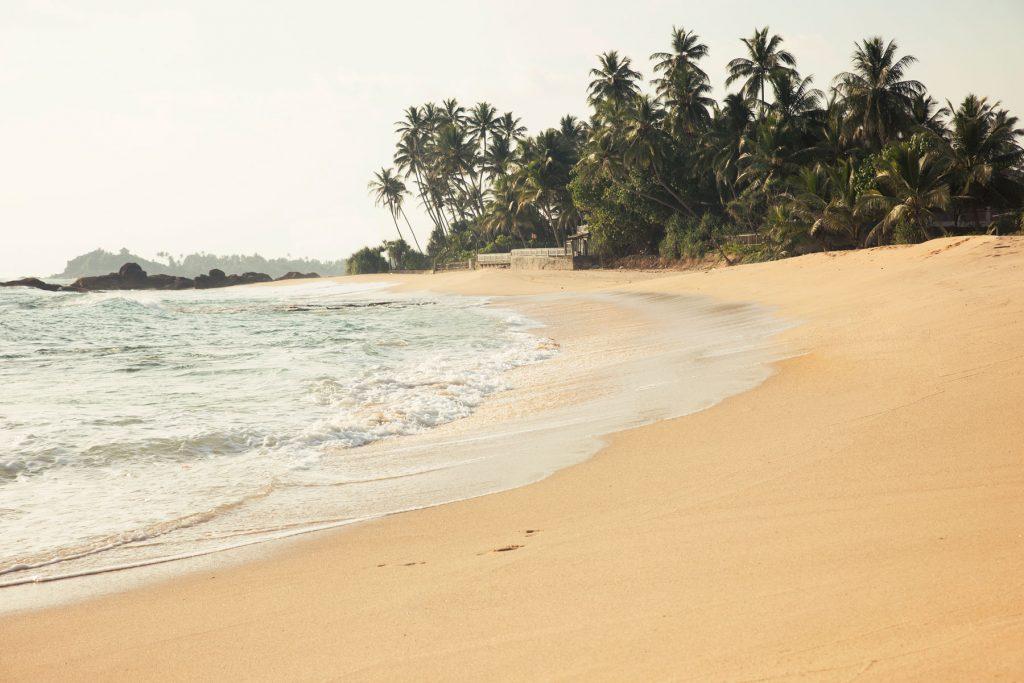 Monzon Sri Lanka