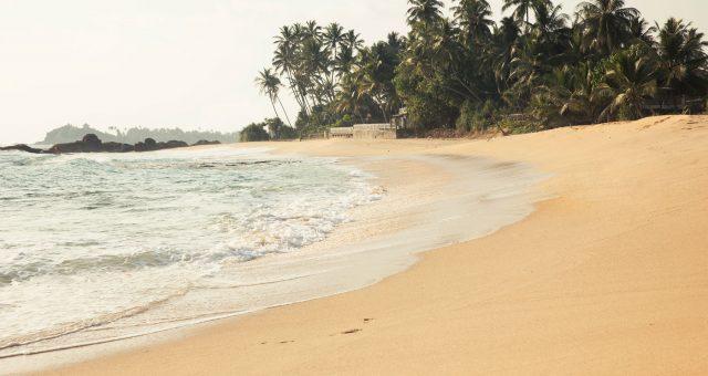 Clima en Sri Lanka. Conoce la mejor época para visitar el país