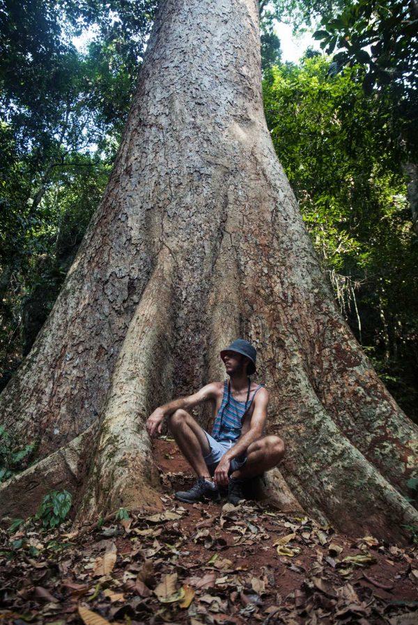 Que ver y hacer en el parque nacional de Khao Sok